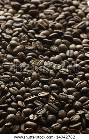 Grains of coffee close up - stock photo