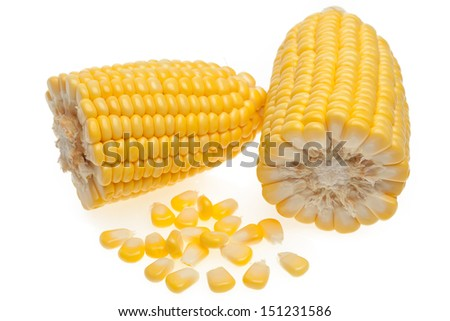 Grains of corn isolated on white background - stock photo