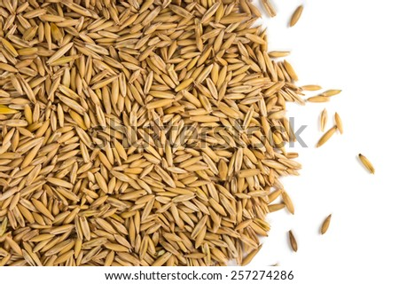 Grains of oats on a white background - stock photo