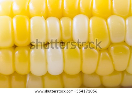 Grains of ripe corn - stock photo
