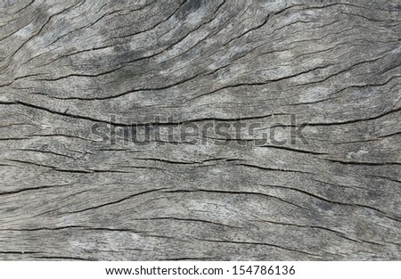 Grains the pattern on wood  - stock photo