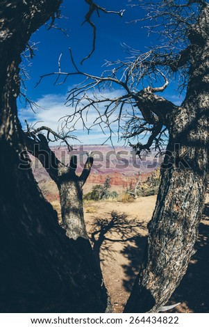 Grand Canyon National Park - stock photo