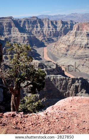 Grand Canyon National Park Eagle Point – Hualapai  Indian Reservation - stock photo