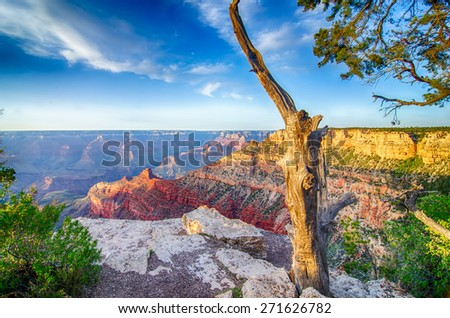 Grand Canyon sunny day with blue sky - stock photo