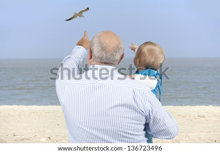 grandfather with granddaughter looking at seagulls at the beach - stock photo