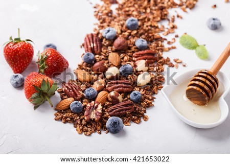 Granola with nuts,Goji berries, honey,and berries,scattered on the table.Healthy dry Breakfast.selective focus. - stock photo