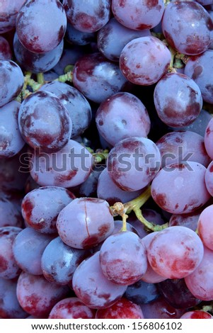 Grape in lovely purple