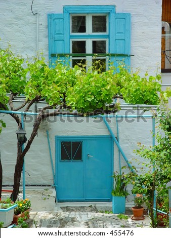 Grape vine in front of a white house on Samos, Greece - stock photo