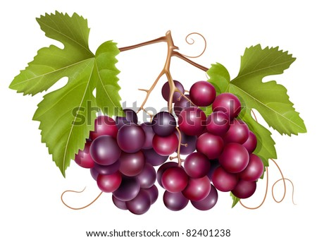 Grape with green leaves. Raster version. - stock photo