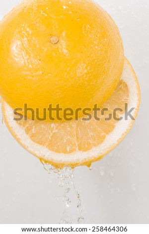 Grapefruit - stock photo