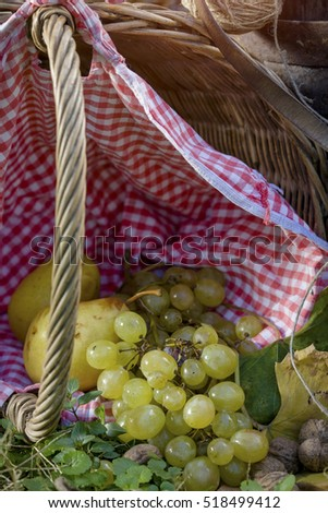 Grapes and pears in a picnic basket