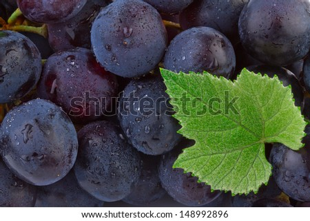 Grapes background. Close up of ripe grapes - stock photo