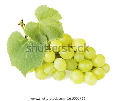 Grapes branch closeup isolated on white background - stock photo