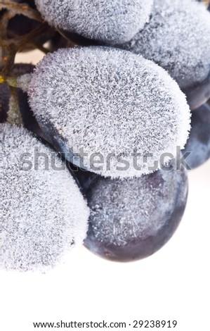 Grapes frozen. Isolation on the white - stock photo