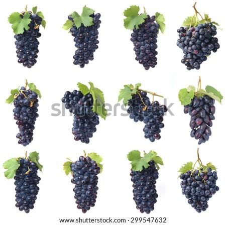 Grapes fruit - stock photo