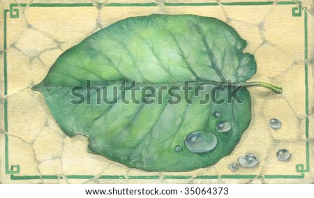 graphic illustration of a leaf - stock photo