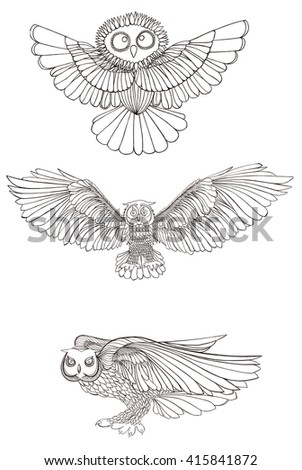 Graphic illustration owl. Black and white style. Hand drawn.