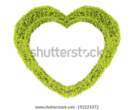 Grass and plants, small  green heart. During the Valentine season. on white background - stock photo