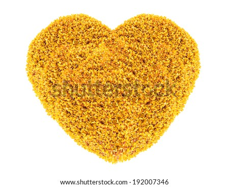 Grass and plants, small orange heart. During the Valentine season. on white background - stock photo