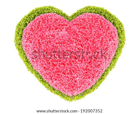 Grass and plants, small red with green heart. During the Valentine season. on white background - stock photo
