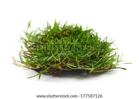 grass and roots isolated, golf divot - stock photo