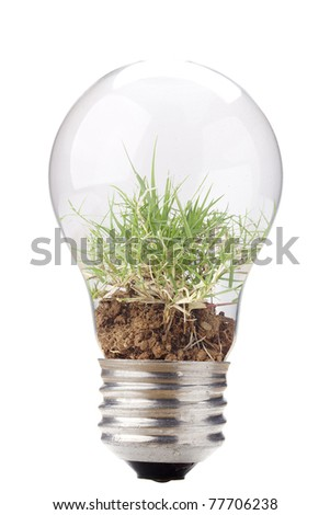 Grass and soil in a light bulb isolated on a white background. - stock photo