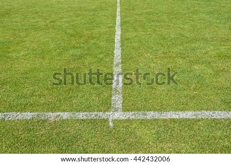 Grass and stripes of the soccer field