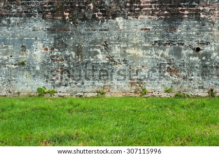 Grass field and old wall - stock photo