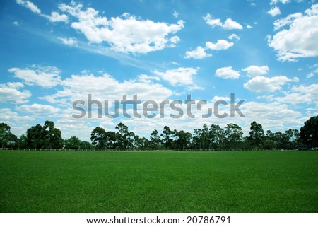 Grass field withe white cloudscape background - stock photo