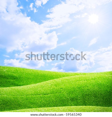 Grass fields and sun sky