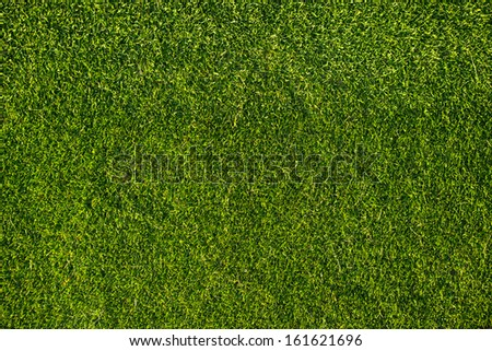 Grass from top view
