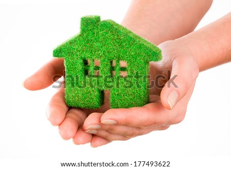 Grass home isolated on white background in human hands