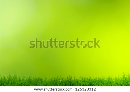 grass on green background - stock photo