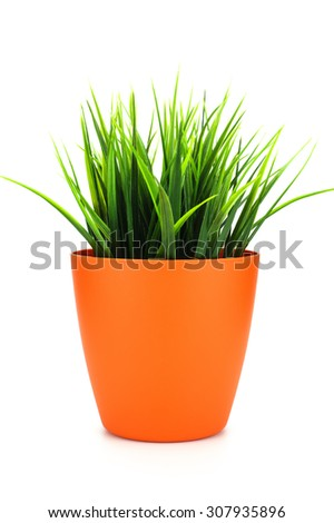 grass plastic in a pot on white  background