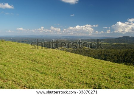 grass scene for background use of maleny queensland sunshine coast