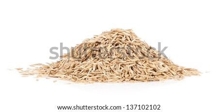 grass seed pile against white