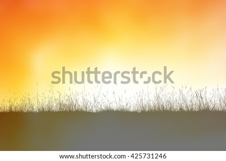 Grass silhouette on sunrise background
