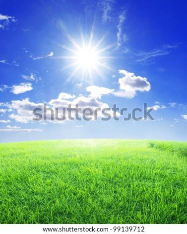 Grass sun and blue sky - stock photo