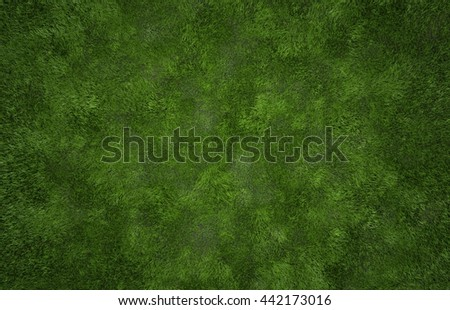 Grass texture - stock photo