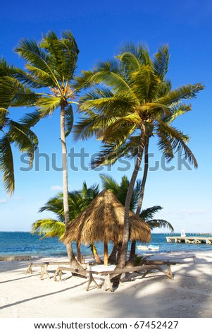 Grass umbrella  on caribbean beach with palms