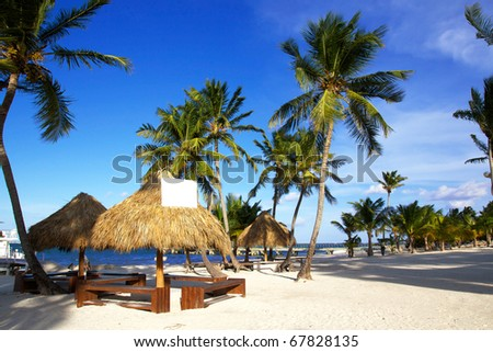 Grass umbrellas  on caribbean beach with palms