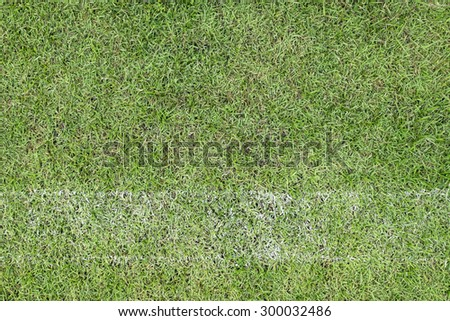 Grass with fade white line - stock photo