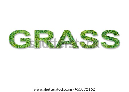 GRASS word made from my own photo of grass.