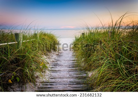 Grasses and fence along path to Smathers Beach at sunset, Key West, Florida. - stock photo