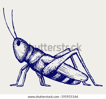 Grasshopper. Doodle style. Raster version - stock photo