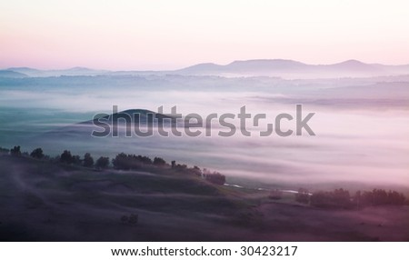 grassland in thick fog - stock photo