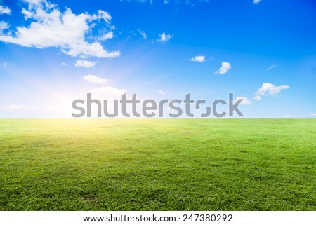 Grassland under the blue sky - stock photo