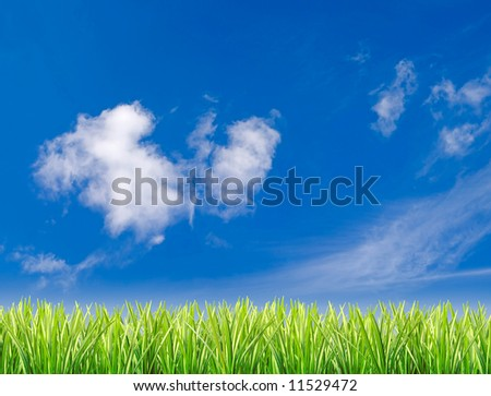 Grassy field set against blue sky with few white clouds - stock photo