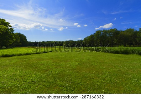 Grassy landscape - stock photo