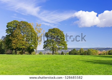 Grassy meadow with trees, sky and clouds